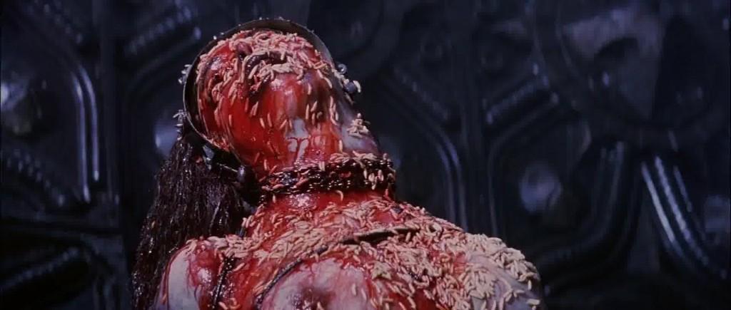 Event Horizon Maggots