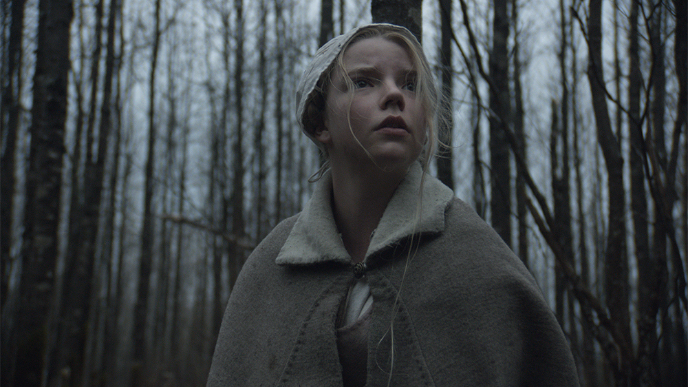 The Witch 2014