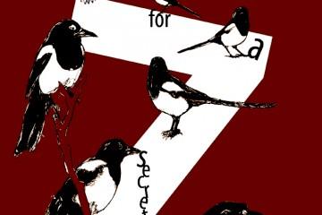 7 magpies